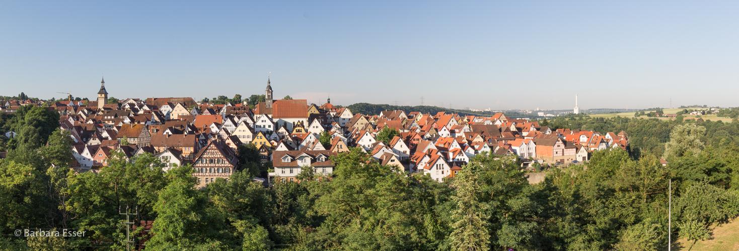 01-Schillerstadt Marbach am Neckar