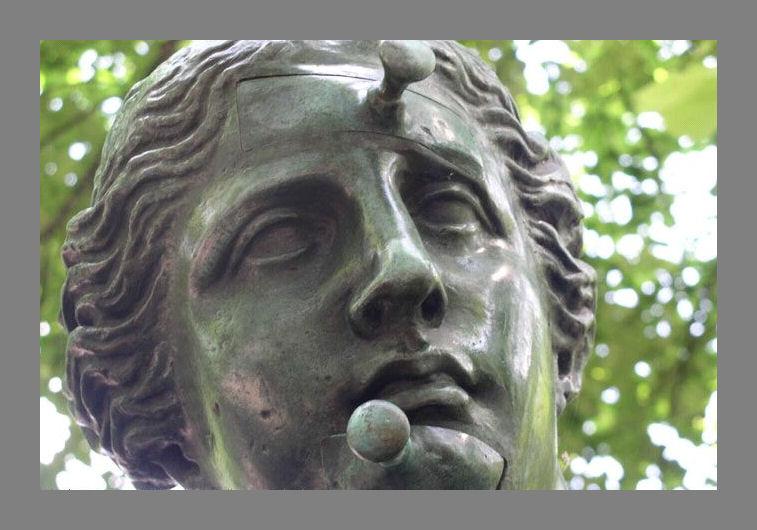 0346-FC-FL-Salvador Dali (1904-1989) Venus de Milo aux tirois (1964) Hoofd