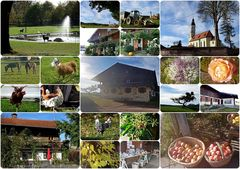 (05 Oktober) Arget bei Sauerlach