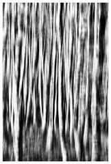 0765-0766_HDR2 Kopie 7