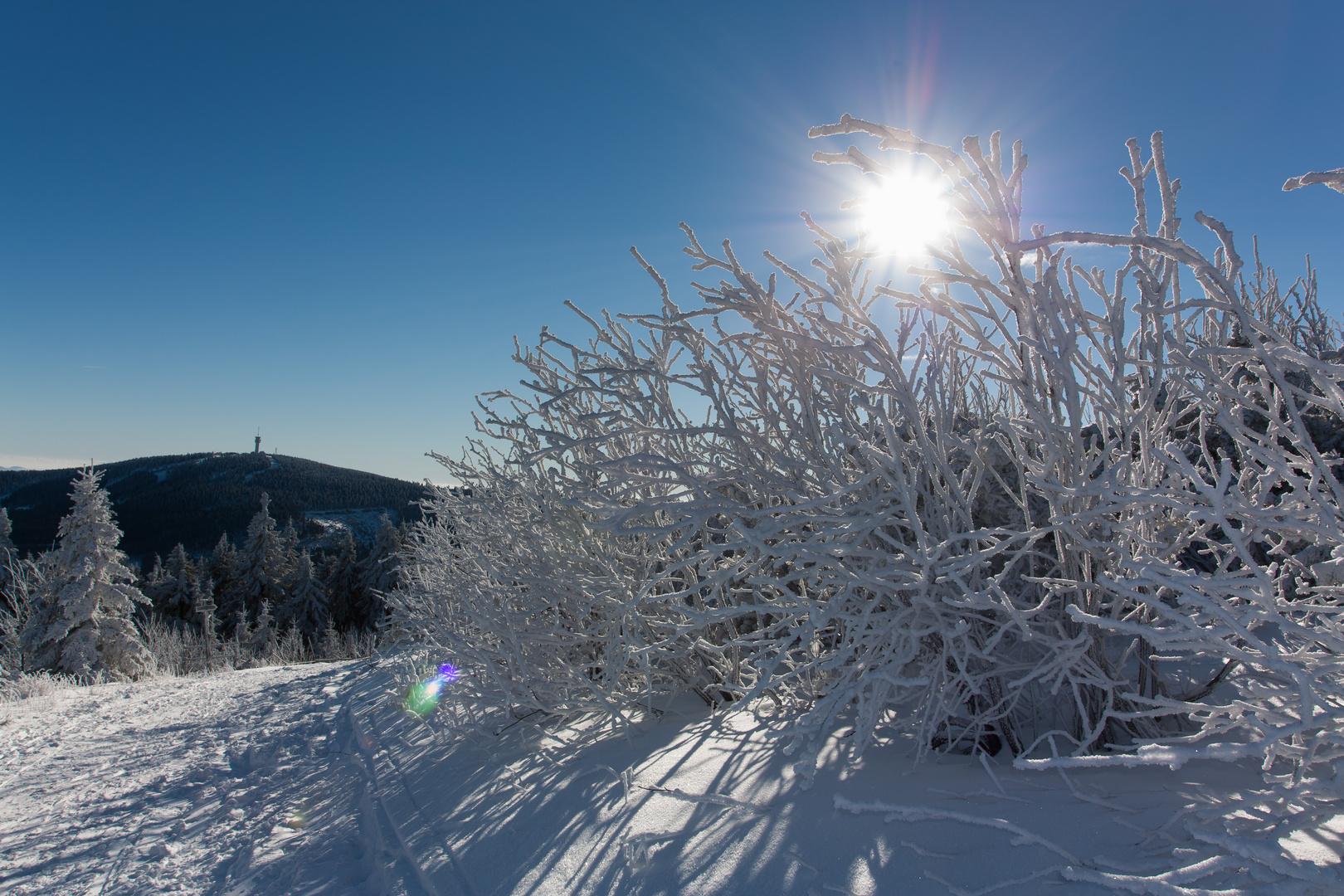 1. Advent Oberwiesenthal im letzten Jahr - Kaiserwetter
