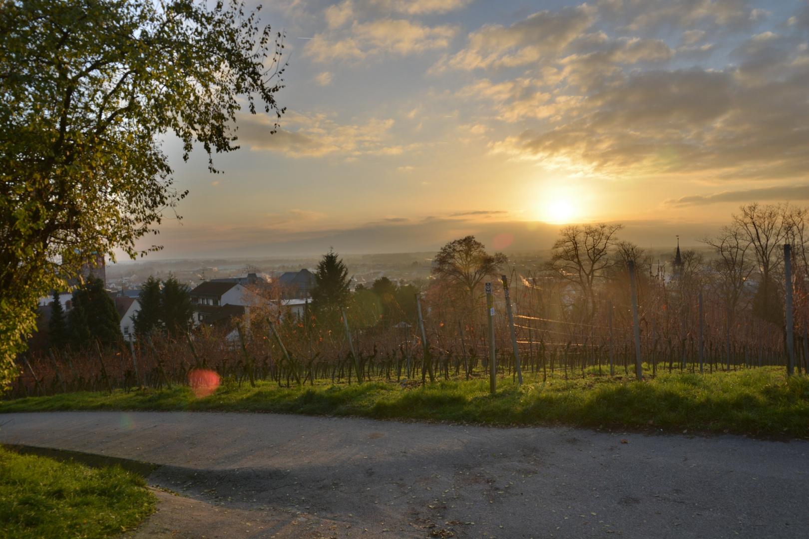 1. Advent Spaziergang Kirschberghäuschen