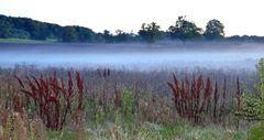 1 Andechs und Nebel