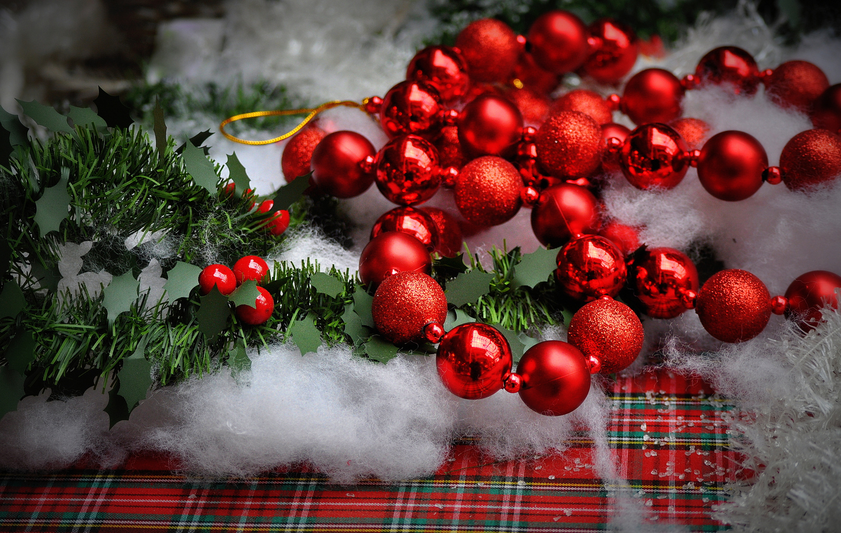 1. Dezember - 1. Weihnachtsfoto