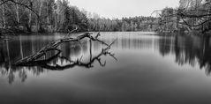 1 Minute am Jägersee