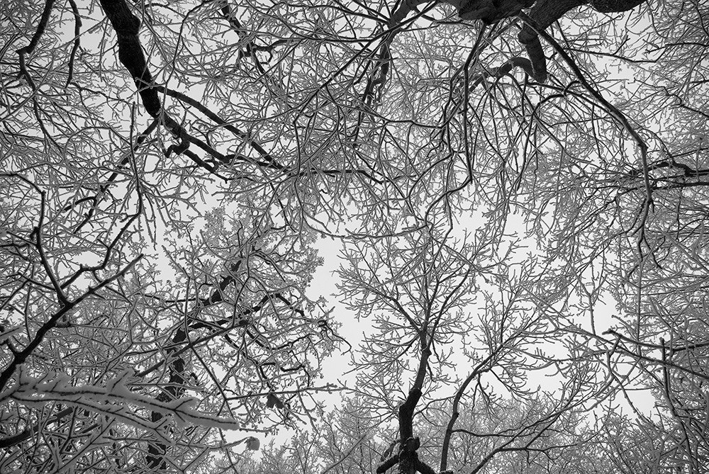 1. Schnee :)