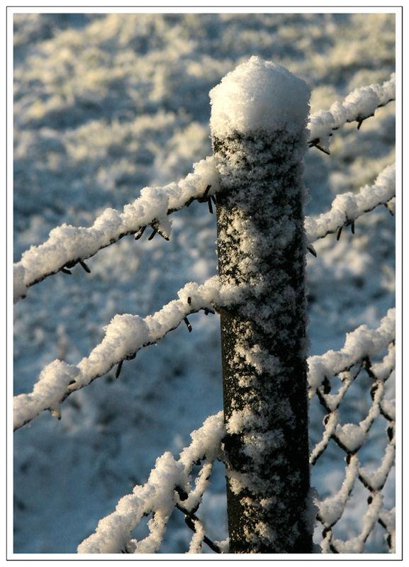 ... 1. Schnee.