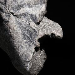 1-Stein²-2-2012