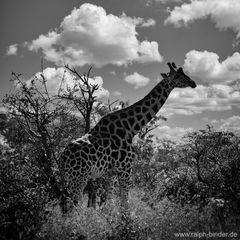 10-01-2012 Uganda