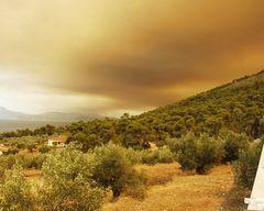 10 Kilometer weiter brennt der Wald