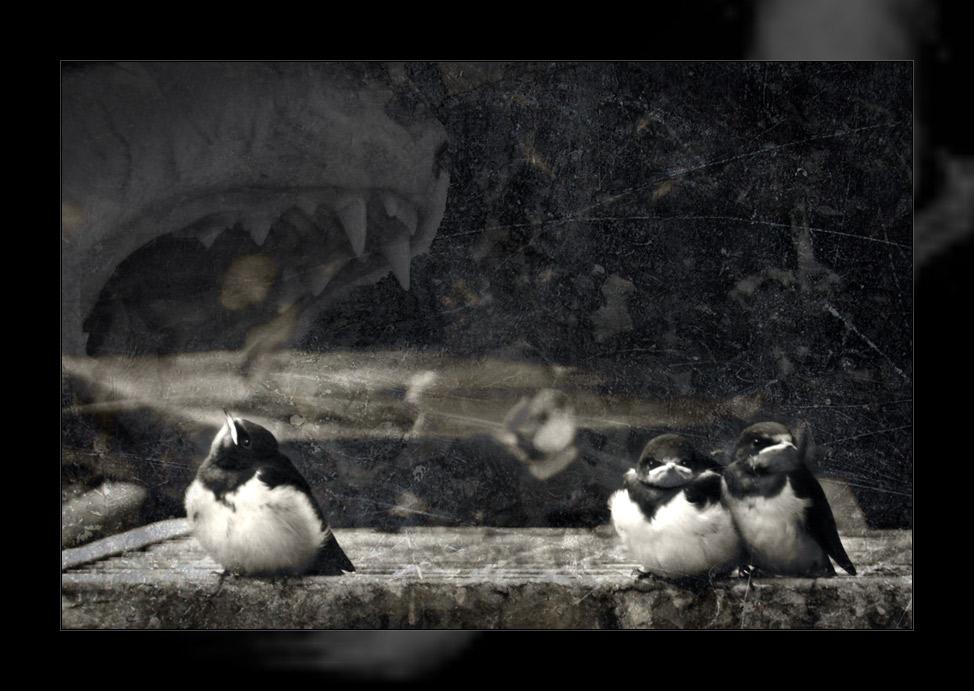 10 kleine pinguine....