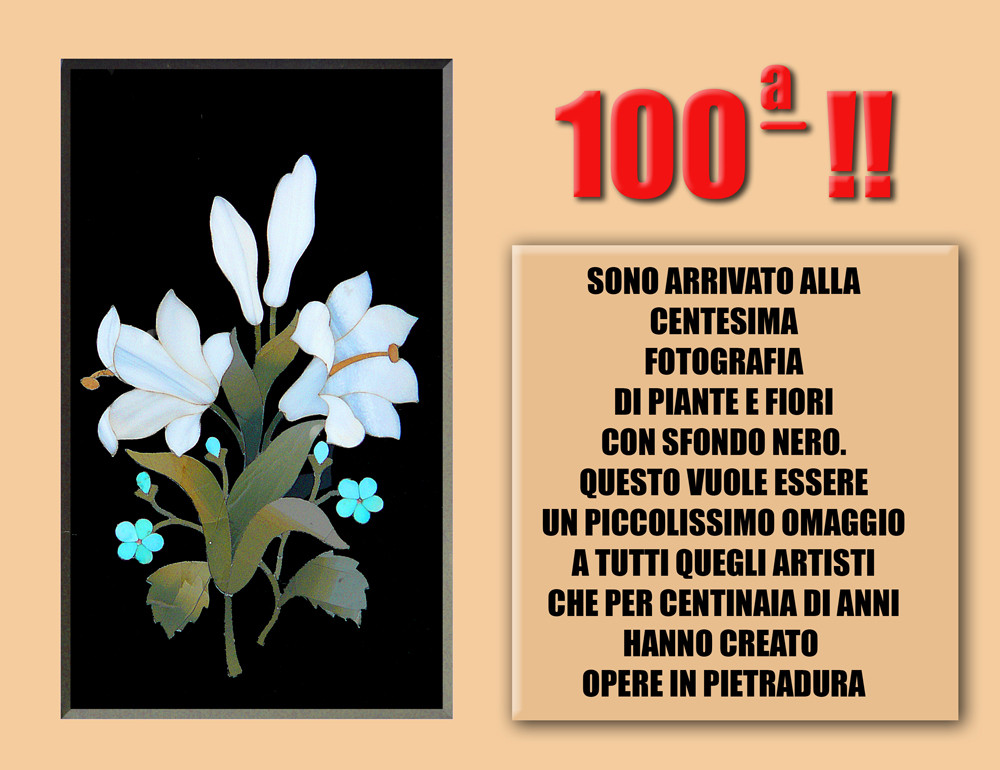 100 CENTESIMA !!!!