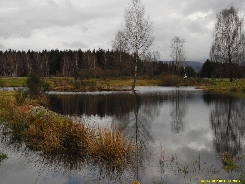 1000 étangs