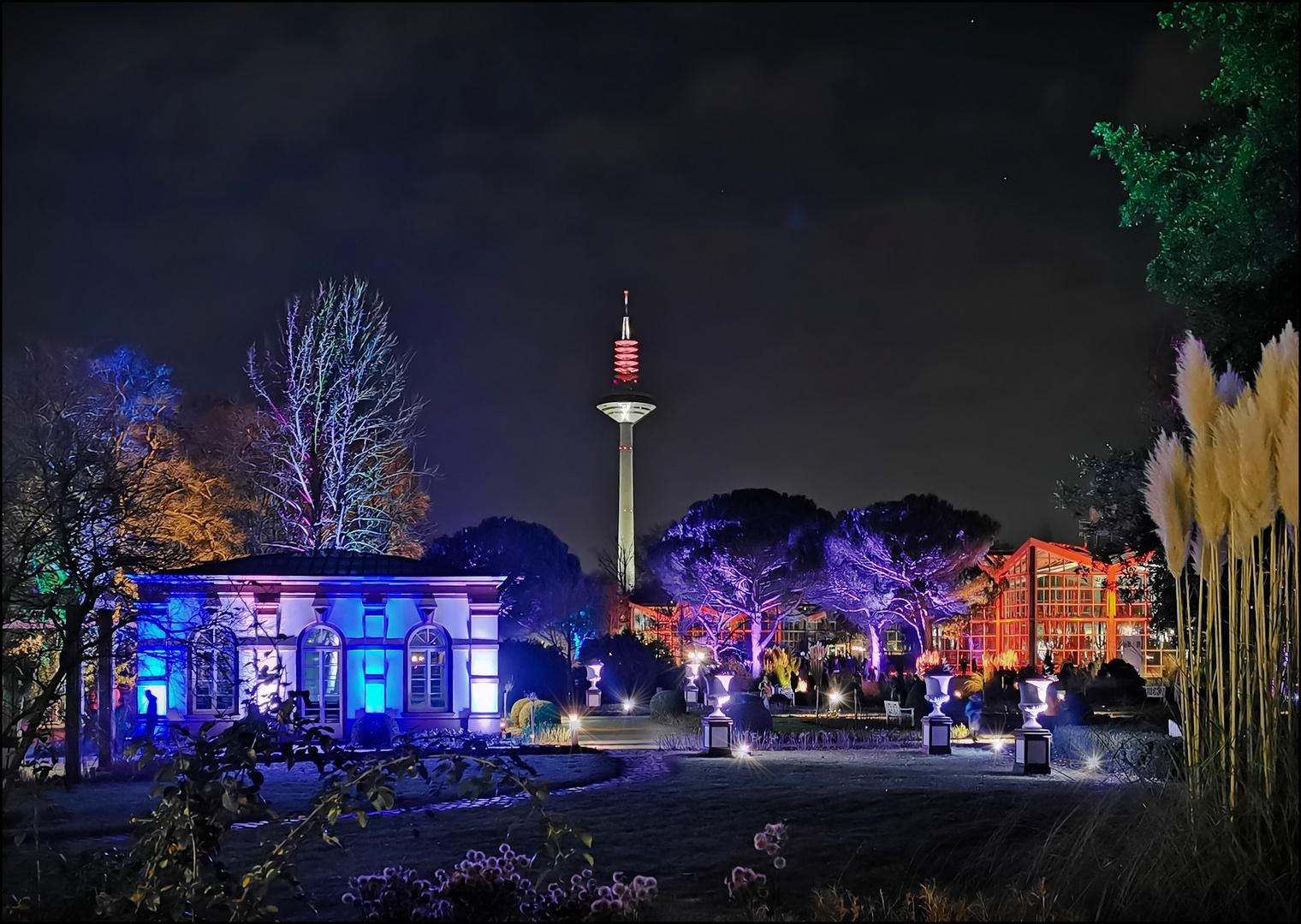 1001 Nacht in Frankfurt