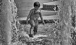 Fun in the Sun di Adele Oliver