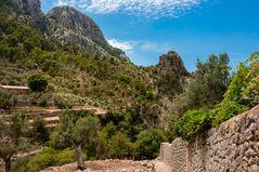 107-Mallorca-07-2014-5289