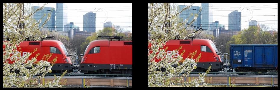 1116 Frühling