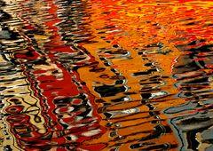 1166....reflets