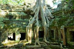 1200 Jahre- im Reich der Khmer Kultur- 2009 Travel to Kingdom of Cambodia