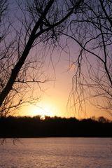 13 janvier - 17 h 50 - camaïeu d'un crépuscule hivernall
