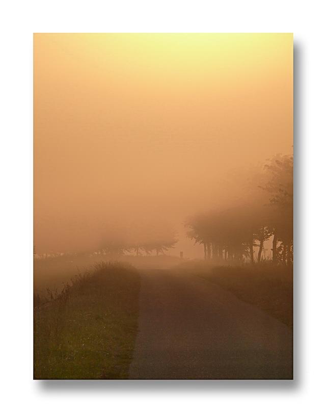 14,08.2010... 7:07:22 Oranjedijk
