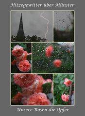 14.7.2010 Hitzegewitter über Münster (20:30)