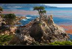 17 Mile Drive - California 2007