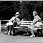 1966 An einem Sonntag im Stadtgarten Köln-Mülheim (1)Soweit die Füße tragen und die Schuhe nicht drü