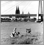 1966 Sommerfreuden am Rhein bei Köln -15-