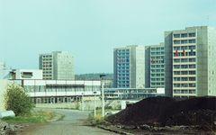 1984 Halle/S 11