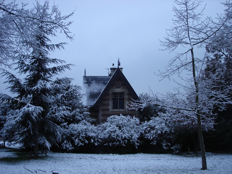 1ère neige au bois de Boulogne