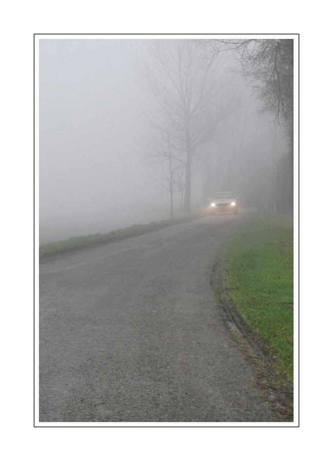 1st day of the year 2008 - 05 (Zeeuws-Vlaanderen)