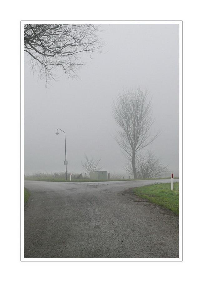 1st day of the year 2008 - 06 (Zeeuws-Vlaanderen)