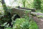 2 Die Brücke über den Buchanwasserfall von 1851