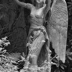 2 Engel auf dem Friedhof Ohlsdorf