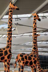 2 Giraffen unterm Airportdach Gi-92col