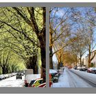 2 Jahreszeiten + 2 Richtungen = 1 Straße + 1 Collage