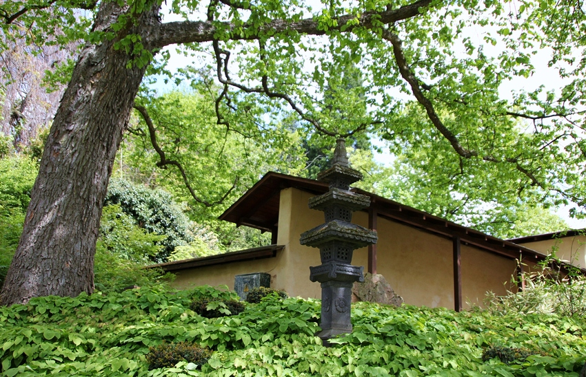 2 - Japanischer Garten