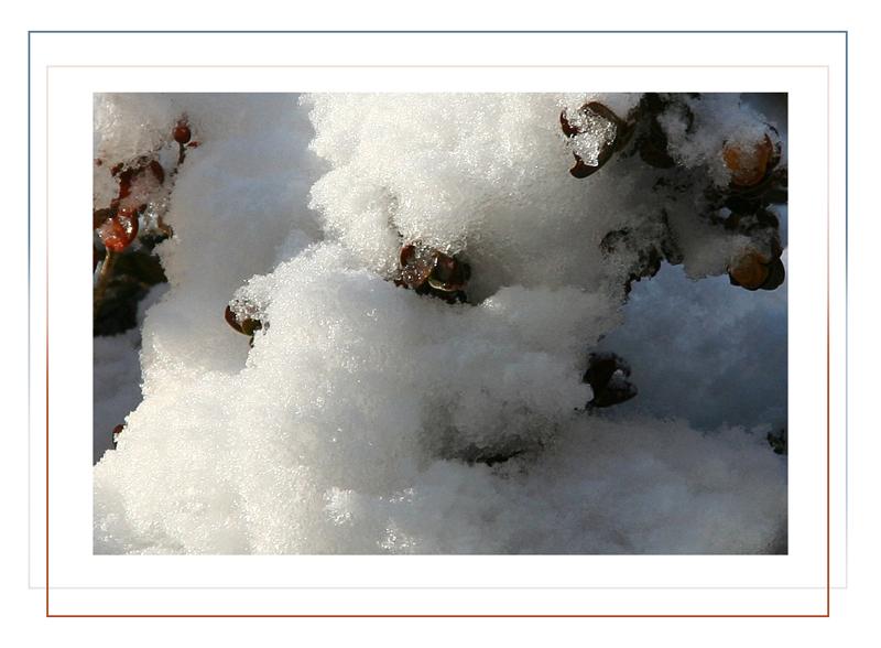 2 Neu 0 Jahrs 0 Schnee 9