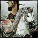 2 Pferdestärken am Rande einer Autohausfete