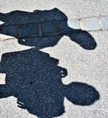 2 Schatten finden zueinander