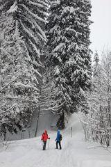 2 Schneeschuhwanderer Höfle19