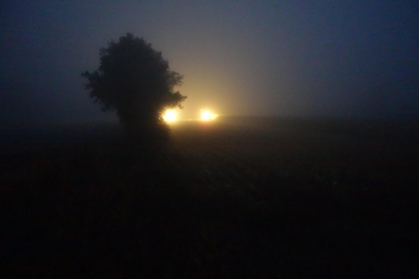 2 Trecker im Nebel