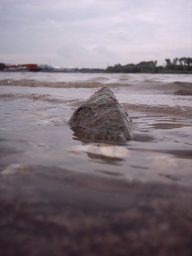2004-07-13 Beachview: The Rock