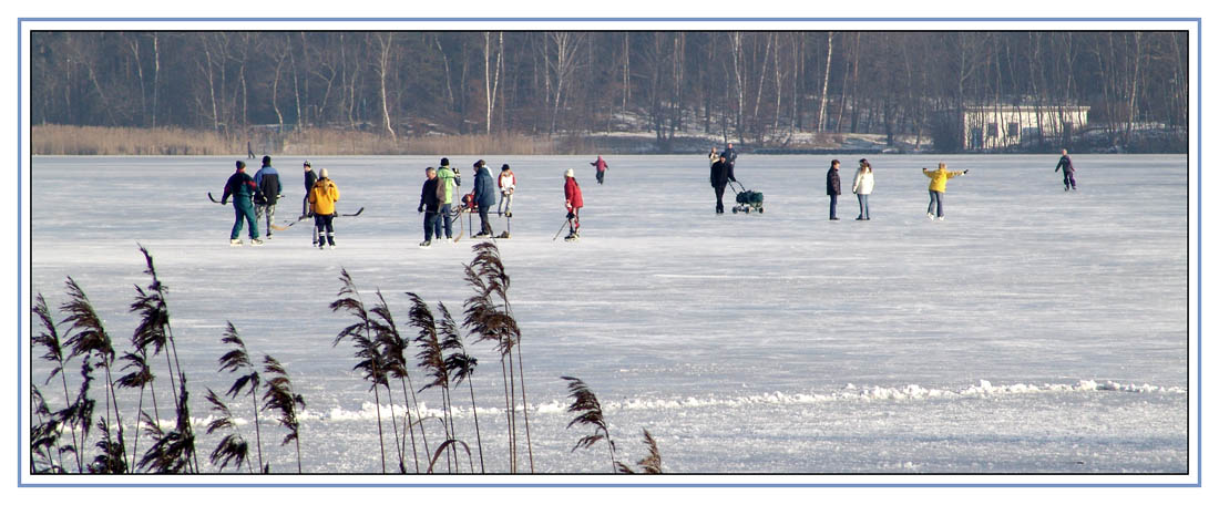 2006-01-15_Braunsteich