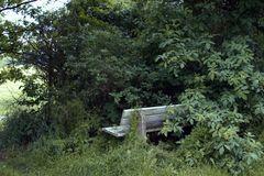 2006_05_24_PICT0002_1