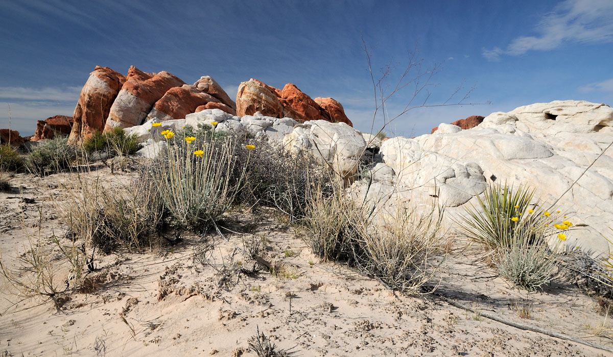 2010 - Valley of Fire I