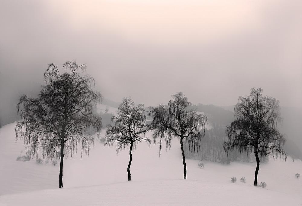 2012_01_20_a