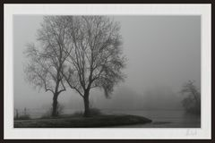 2012_4355 Nebelstimmungen