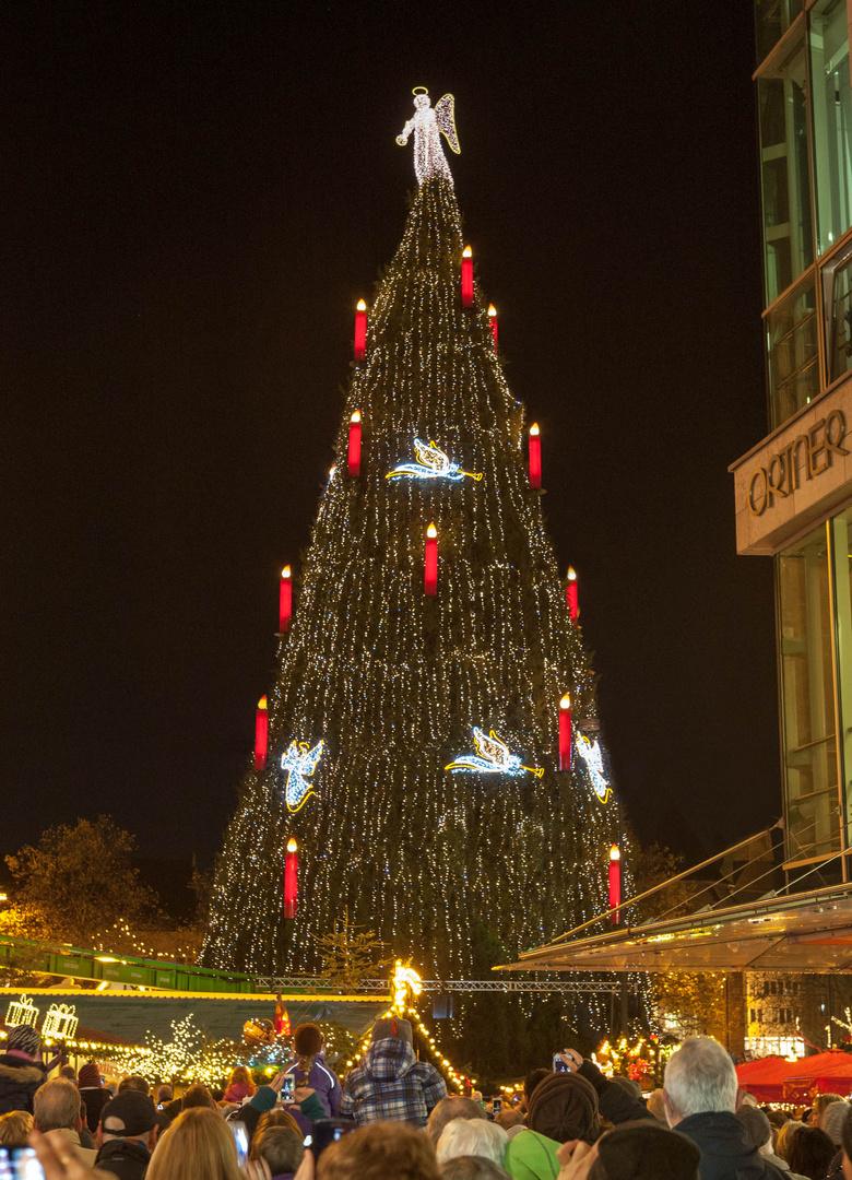 Schönster Weihnachtsbaum Der Welt